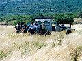 operativni sastanak deminera i filmske ekipe prije snimanja na lokaciji Gaćeleze u Zadarskom zaleđu